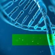 Reprogram your genes